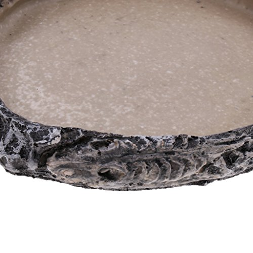 Blesiya Reptile Home Decoration Resin Feeding Bowl Tortoise Gecko Food Water Dish, Dia. 15cm/5.91inch by Blesiya (Image #5)