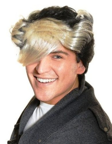 Incredible 80S Flock Of Seagulls Fancy Dress Wig Inc Free Wig Cap Amazon Co Hairstyle Inspiration Daily Dogsangcom