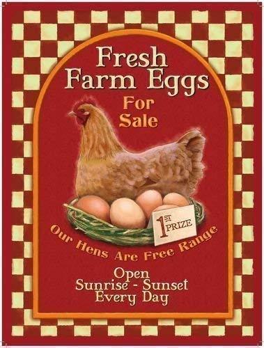 Fresco Granja huevos. Gallina y nido de huevos, Saludable desayuno, soilders, gama, laid comida, publicidad para barra…