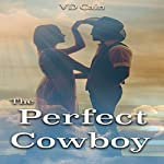 The Perfect Cowboy | VD Cain