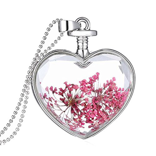 Bling Stars Dried Pressed Flower Living Memory Charms Locket Heart Pendant Necklace (Silver-Rose)