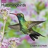 Hummingbirds Wall Calendar (2019)