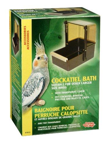 Living-World-Cockatiel-Bird-Bath-Brown-and-Topaz