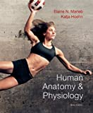 Human Anatomy & Physiology (9th Edition) (Marieb, Human Anatomy & Physiology)
