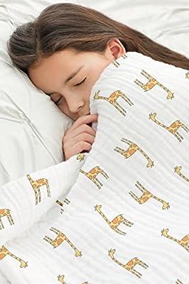 aden + anais Muslin Dream Blanket