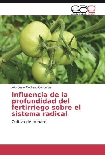 Descargar Libro Influencia De La Profundidad Del Fertirriego Sobre El Sistema Radical: Cultivo De Tomate Julio Cesar Centeno Cahueñas