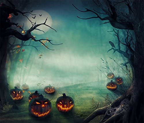HMT 8X8ft (250cmX250cm)Halloween Photography Backdrops Pumpkin in Forest Background with Pocket Moon (Halloween Effects Reviews)