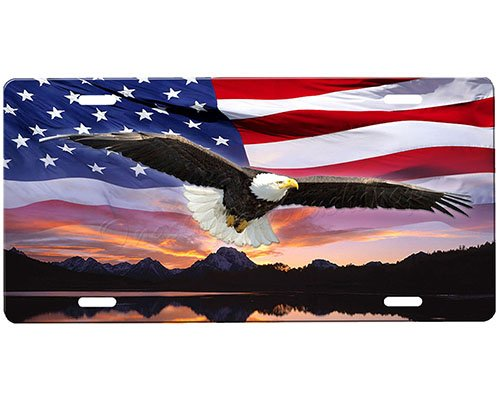(onestopairbrushshop Eagle License)