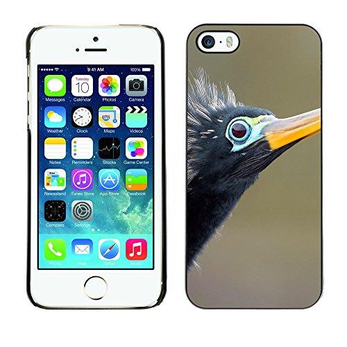 Premio Sottile Slim Cassa Custodia Case Cover Shell // F00019292 Oiseau // Apple iPhone 5 5S 5G
