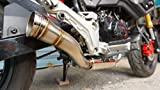 ZoOM Exhaust Fit For GROM 125 MSX SF 2013-2019 Full System Low Mount