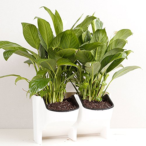 adeeing-2-pocket-vertical-gardening-limited-space-stackable-planters-for-indoor-outdoor-decoration-o