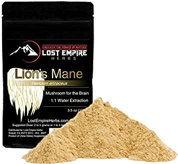 Lion s Mane Mushroom Extract Powder – Organic Nootropic Supplement – Helps Regulate Mood, Supports Brain Function, Improves Well Being, Memory Support – 100 g