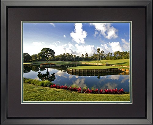 Legends Never Die TPC Sawgrass #17 Double Matted Photo Frame, 16
