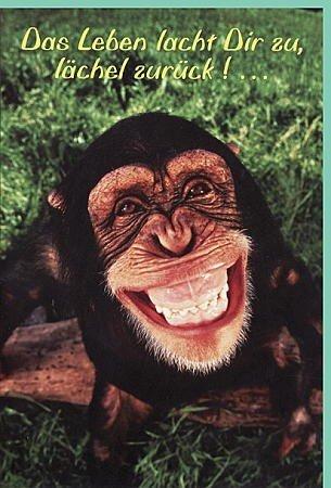 Freche Geburtstagskarte Das Leben lacht: Amazon.de: Bürobedarf