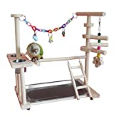 QBLEEV Parrot Wood Stand Perch Bird Playstand Playground Playgym Playpen Ladder with Toys Exercise Play (Include a Tray) (16''L10''W15''W)