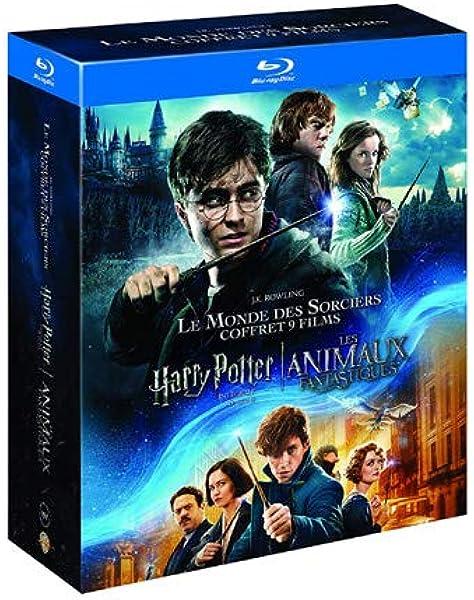Harry Potter FANTASTIC BEASTS Inspiré Vinyle Autocollants x9 collection