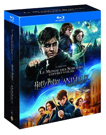 Harry Potter 8 Film Collection & Fantastic Beasts - 9-Disc Box Set ( Harry Potter and the Sorcerer's Stone / Harry Potter and the Chamber of Secrets / Harry Pott [ Blu-Ray, Reg.A/B/C Import - France ] ()