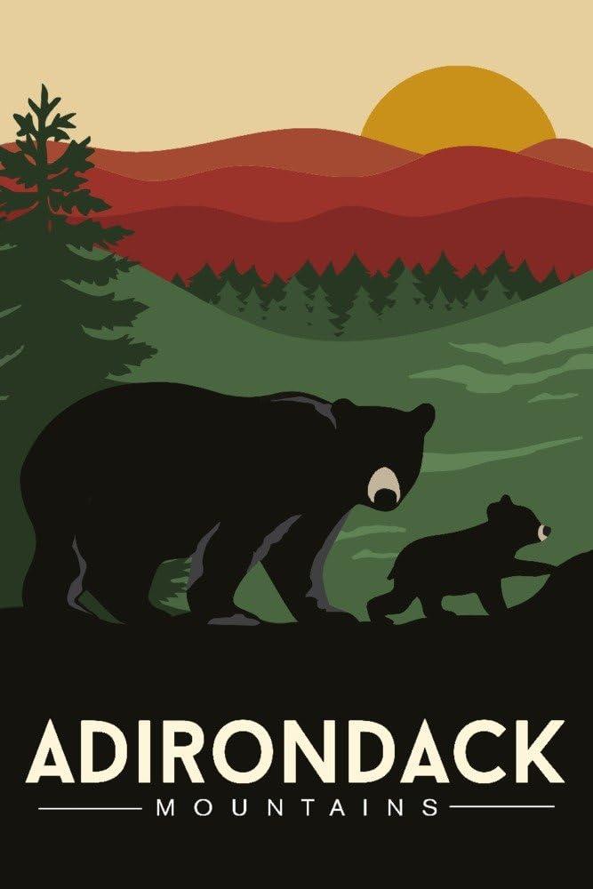Adirondack Mountains, New York - Black Bear and Cub (12x18 Art Print, Wall Decor Travel Poster)