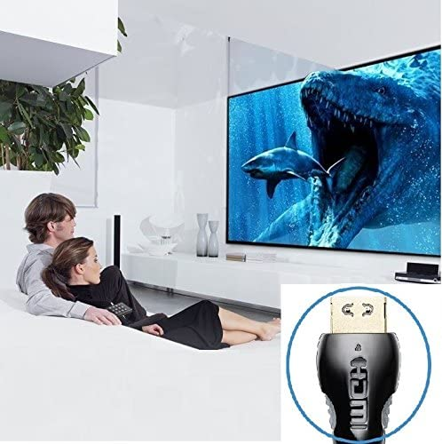 Xbox Playstation PS3 PS4 PC TV 3D 15ft 4K HDMI 2.0 Lock Type Gold Plated Ethernet//Audio Return Channel Video 4K UHD 2160p HDMI Cable 15 FT HD 1080p Braided Cord
