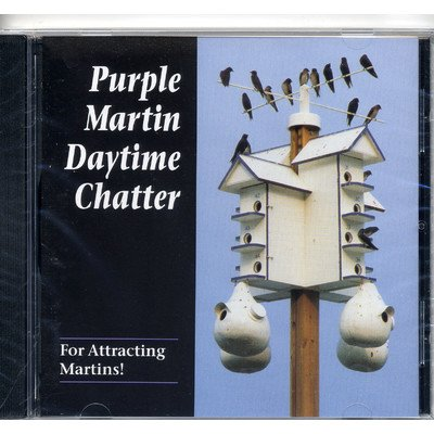 Day Time Chatter CD]()