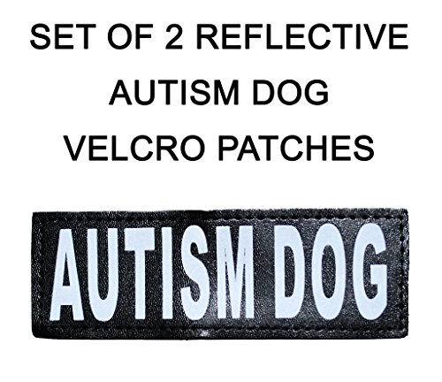 Reflective AUTISM Patches Service harnesses