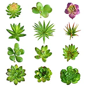 YMCAFZ 12 Pcs Mixed Artificial Succulent Flowers Plants Unpotted Decor Stems Fake Succulents Plants Bulk Assorted Picks for Wedding Home Decor Indoor Wall Garden DIY Decorations 30