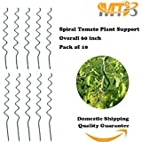 MTB Plant Supports Spiral Tomato Cages Green 59 inch Height  Dia 6mm Pack of 10