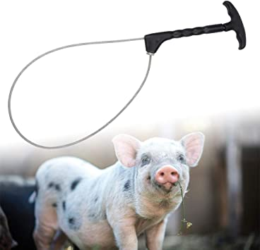 Acero Titular de cerdo cerdo Catcher trampa de lazo