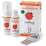 Ladibugs One and Done Lice Treatment Kit - 3-Step Elimination - Comb, Mousse, Spray | Natural & Effective Head Lice & Nit Remover | Safe Removal for Kids, Family | Clinic Preferred, Nurse Approved