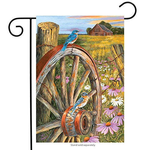 Briarwood Lane Field of Dreams Spring Garden Flag Wagon Wheel Bluebird Floral 12.5
