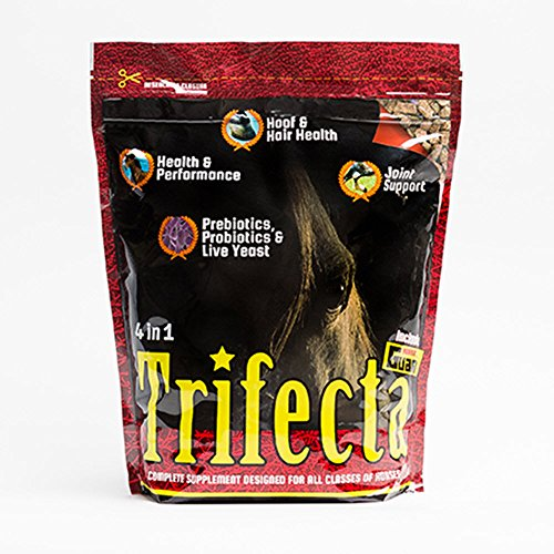 51OWTdqxWEL - Horse Guard Trifecta Equine Vitamin Mineral Joint Hoof & Probiotic Supplement