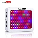 LED Grow Light 300W, Hydroponic System Led Plant Lights Greenhouse Garden Indoor Growing System with 8 Bands Full Spectrum for Flowers, Vegetables, Fruits Review