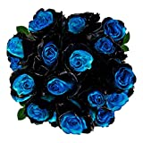 FRESH Tinted Roses| Black and Blue| 25 stems (Pluto Rose) Magnaflor - XXL Blooms| Bunch| 10-12 days vase Life