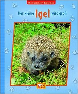 Die Tierkinder Bibliothek Der Kleine Igel Wird Groß Amazonde