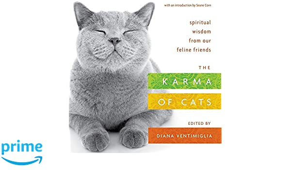 The Karma of Cats: Spiritual Wisdom from Our Feline Friends ...