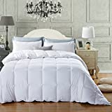 Alternative Comforter - NEWLAKE White Down Alternative Comforter Queen Size, Box Stitched Protect Against DustMites and Allergens for Year Round