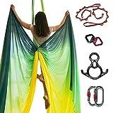 DASKING Premium Aerial Silks Equipment - Safe Deluxe Aerial Kit (Multicolor-B)
