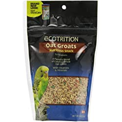 Ecotrition Oat Groats Nutritious Snack For Parakeets, 8-Ounce