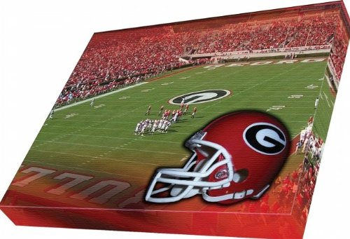 georgia bulldogs canvas - 4