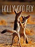 Hollywood Fox