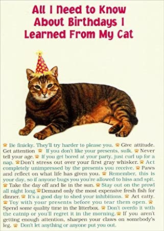 Amazon All I Need From Cat Portal Funny Birthday Card