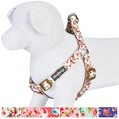 Blueberry Pet New Step-in Easter Spring Scent Inspired Pink Rose Print Ivory Dog Harness, Chest Girth 16.5