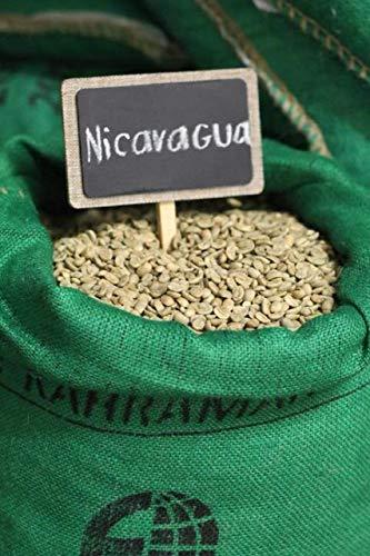 NICARAGUA MARAGOGYPE SCREEN 19 by TMCS (Image #1)