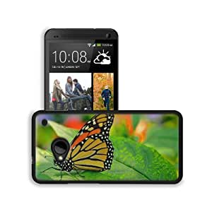 Black Yellow Butterfly Insect Nature HTC One M7 Snap Cover Premium Leather Design Back Plate Case Customized Made to Order Support Ready 5 11/16 inch (145mm) x 2 15/16 inch (75mm) x 9/16 inch (14mm) MSD HTC One Professional Leather Plastic Cases Touch Acc