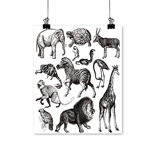 Wall Decor Africa Wildlife Fauna s Vintage imal Clipart Wall Art for Bedroom Home,20