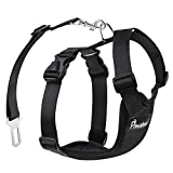 Pawaboo Dog Safety Vest Harness, Pet Dog Adjustable Car Safety Mesh Harness Travel Strap Vest with Car Seat Belt Lead Clip, Medium Size, BLACK