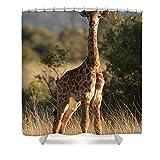 Pixels Shower Curtain (74'' x 71'') ''Baby Giraffe''