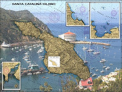 Avalon Bay at Santa Catalina Island Nautical Chart Unframed Vinyl Art Print - Perfect for outdoors. All-weather.