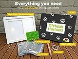 Ultimate Dog or Cat Pet Pawprint Keepsake Kit