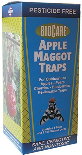 Springstar Apple Maggot Trap With 3 Lures S510 (Apple Trap Maggot)